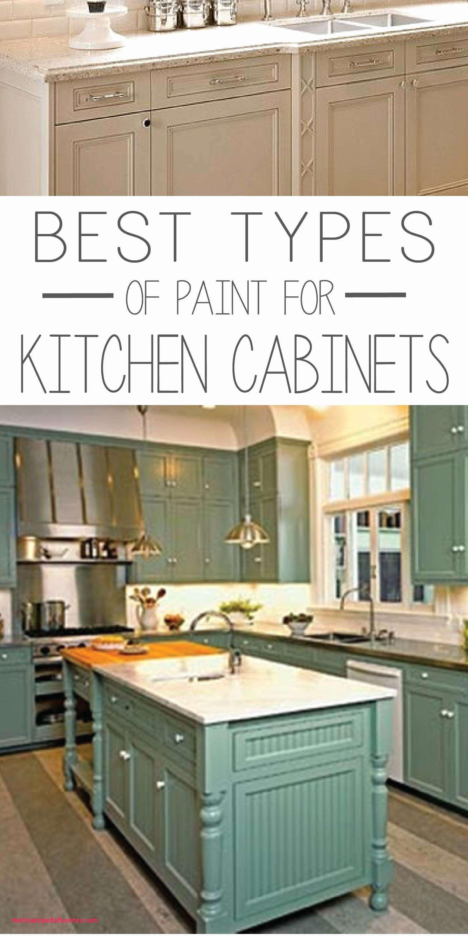 Short Kitchen Base Cabinets Fantastic Unique Kitchen Base Cabinets throughout dimensions 1600 X 3200