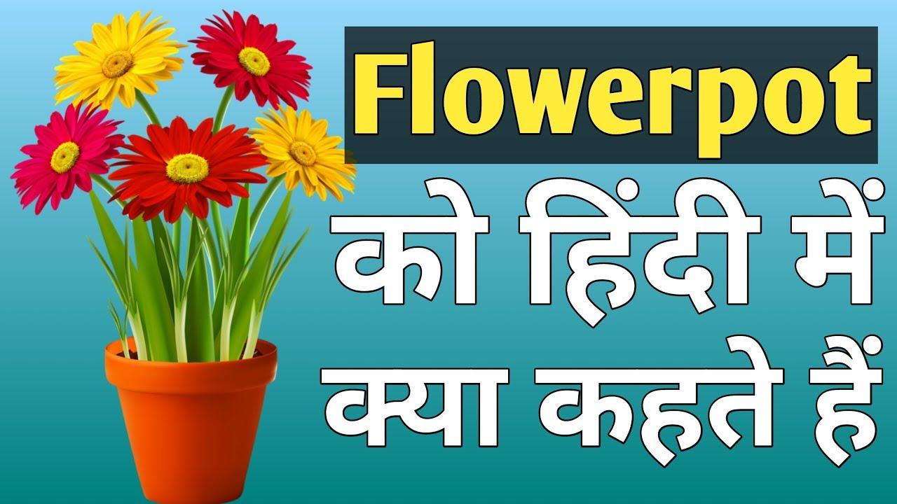 Flower Pot Ko Hindi Me Kya Kehte Hain Meaning Of Flower in size 1280 X 720