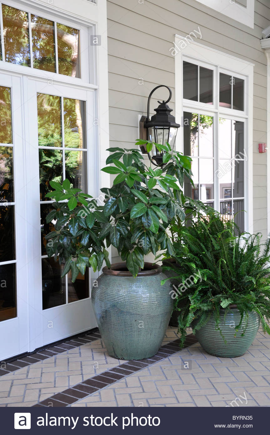 Several Outdoor Plants In Large Vases Sitting On A Covered with regard to proportions 863 X 1390